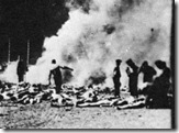 holocaust bodies burning outside auschwitz rs to 288 X 210